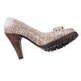 Zapatos del invierno de las mujeres elegantes Imagenes de archivo