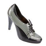 Zapatos del invierno de las mujeres elegantes Imagen de archivo libre de regalías