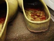 Zapatos del jardín fotografía de archivo libre de regalías