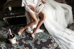 Zapatos del primer, champán, vestido y velo nupciales, los mejores accesorios para la novia para casarse la preparación de la mañ Fotos de archivo libres de regalías