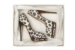 Zapatos del tacón alto del estampado de animales en caja fotografía de archivo