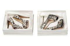 Zapatos del tacón alto del estampado de animales en caja Foto de archivo libre de regalías