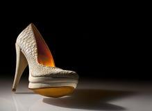 Zapatos elegantes de las señoras en un fondo negro Foto de archivo libre de regalías