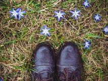 Zapatos elegantes, negros y flores brillantes, azules fotografía de archivo
