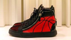 Zapatos elegantes para las señoras Fotografía de archivo libre de regalías