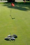Zapatos en campo de golf imagen de archivo