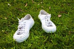 Zapatos en hierba Fotos de archivo