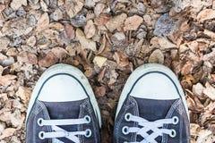 Zapatos en las hojas secadas molidas imagen de archivo libre de regalías