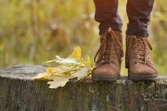 Zapatos femeninos de Brown en un tocón, follaje amarillo Concepto del otoño Foto de archivo