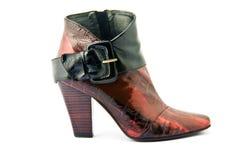 Zapatos femeninos de la manera Imagen de archivo libre de regalías