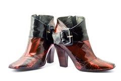 Zapatos femeninos de la manera Fotografía de archivo libre de regalías