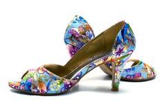 Zapatos femeninos elegantes fotografía de archivo libre de regalías