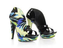 Zapatos magníficos del modelo Imagen de archivo