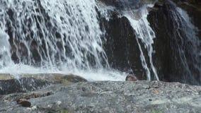 Zapatos masculinos que se colocan en piedras en la cascada que fluye en montaña Hombre turístico que se baña en cascada de la mon almacen de video