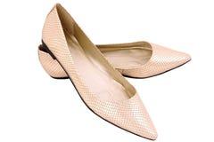 Zapatos planos aislados del snakeskin del oro Foto de archivo