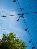 Zapatos que cuelgan del alambre contra el cielo azul Imagen de archivo