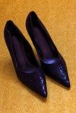 Zapatos relucientes Imagen de archivo