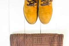 Zapatos retros brillantes de las mujeres de Brown Imagenes de archivo