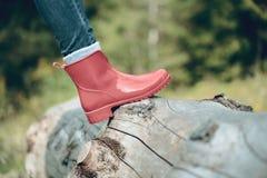 Zapatos rojos de las mujeres en el árbol en las montañas cárpatas fotografía de archivo libre de regalías