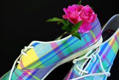 Zapatos tenis de la tela escocesa Imágenes de archivo libres de regalías
