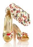 Zapatos y bolso femeninos Fotografía de archivo