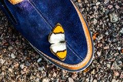 Zapatos y el modelo del color del butterflu Foto de archivo libre de regalías