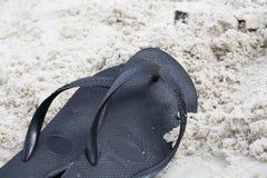 Zapfen auf Sand Lizenzfreies Stockbild