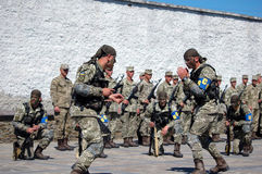 ZAPORIZHIA, UKRAINE - June 3, 2017: Combat reception of Ukraine special forces soldiers on Khortytsya island Stock Image