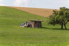 Zappatore con la capanna e terra su un paesaggio rurale del campo di grano Immagini Stock Libere da Diritti