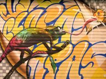 Zapped den Pesky kameleont - gatakonst av Valencia royaltyfri fotografi