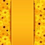 Zaproszenie karta z żółtym i pomarańczowym gerbera kwitnie Obraz Stock