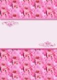 Zaproszenie karta z orchideami Zdjęcia Stock