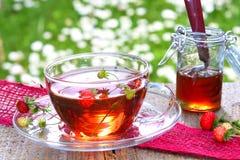 Zaproszenie truskawkowa herbata Fotografia Stock