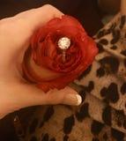 Zaręczynowy diamentowy pierścionek obraz royalty free