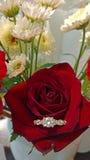 zaręczynowy mężczyzna pierścionku kostium obrazy royalty free