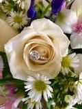 zaręczynowy mężczyzna pierścionku kostium Zdjęcie Royalty Free