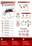 Zaraźliwa Choroba Infographics, Chikungunya - Obraz Stock