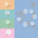 Zaraza. Fondo de la flor del algodón adentro. Imagen de archivo libre de regalías