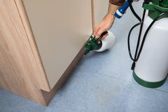Zarazy kontrola pracownika mienia pestycydy natryskowi Zdjęcie Royalty Free