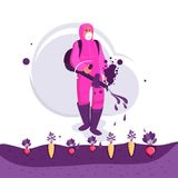 Zarazy kontrola Średniorolni opryskiwanie pestycydy na polu Zdjęcie Royalty Free