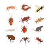 Zarazy kontrolny pojęcie z insekta tępiciela sylwetki płaską wektorową ilustracją Zdjęcia Royalty Free