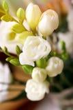 Zarte Blumen stockbild