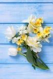 Zarte weiße und gelbe Blumen auf Blau malten hölzerne Planken Lizenzfreie Stockbilder