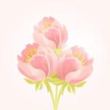 Zarter Hintergrund mit Blumenstrauß von rosa schönen Blumen ENV 10 stock abbildung