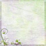 Zarter Jahrestag, Frühling oder Feiertagshintergrund Stockbilder