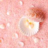 Zartes Konzept des Badekurortes mit hellen Muscheln auf empfindlichem Terry-textur Stockfotos