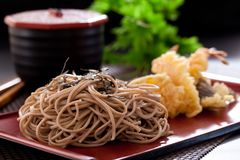 Zaru soba. Noodles with tempura , japanese food stock images