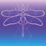 Zarysowywa dragonfly wektor, ręka rysujący piękny fantazi dragonfly na świętym geometria gradientu tle Wielki jako t koszula, tat ilustracji