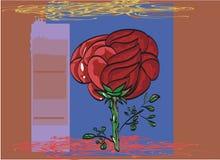 Zarysowywający czarny kontur malującym czerwieni róży kartka z pozdrowieniami Obrazy Royalty Free