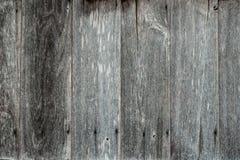 zarządu tła drewniany Fotografia Royalty Free